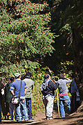 Tourists watch Monarch Butterflies mass at the Monarch Butterfly Biosphere Reserve in El Rosario central Mexican in Michoacan State. Each year hundreds of millions Monarch butterflies mass migrate from the U.S. and Canada to Oyamel fir forests in the volcanic highlands of central Mexico. North American monarchs are the only butterflies that make such a massive journey—up to 3,000 miles (4,828 kilometers).