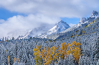 New snow and storm clouds shroud mountain tops along the Cimarron River in The Uncompahgre Range & wilderness with autumn color; Uncompahgre National Forest, Owl Creek Pass, Colorado