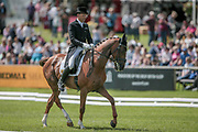 LASSBAN DIAMOND LIFT ridden by Bill Levett during the dressage at Bramham International Horse Trials 2017 at Bramham Park, Bramham, United Kingdom on 11 June 2017. Photo by Mark P Doherty.