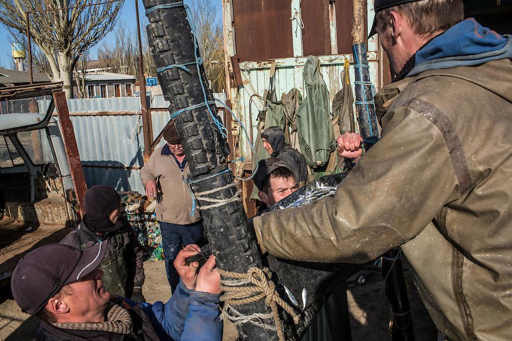 Fishermen unload their catch to send it to market on Saturday, April 11, 2015 in Siedove, Ukraine.