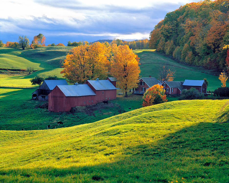 Rolling green hills surround Jenne Farm, near Woodstock, Vermont.