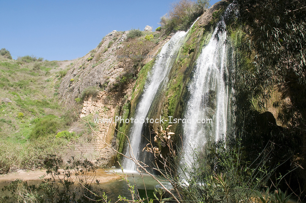 Israel, Upper Galilee, Iyyon River Nature reserve. The Mill waterfall and chalk cliffs. Spring March 2008