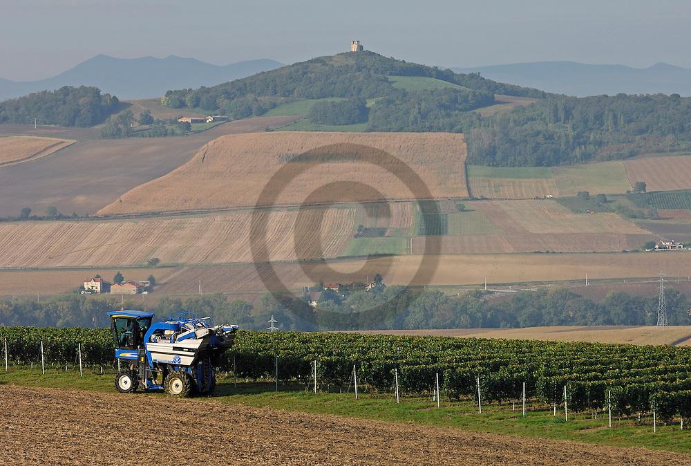 29/09/06 - LIMAGNE - PUY DE DOME - FRANCE - Vendanges mecaniques de GAMAY. Vignoble des Cotes d'Auvergne, viticulteurs de la Cave Saint Verny - Photo Jerome CHABANNE