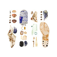 Common Periwinkle (Littorina littorea), Common Slipper Shell (Crepidula fornicata), Green Crab (Carcinus maenas), Blue Mussel (Mytilus edulis), chunk of bone (possibly cow), aluminum can, ceramic cup handle, lobster-claw band, Northern Rock Barnacle (Balanus balanoides), plastic spoon handle, ceramic shard, asphalt chunk tumbled into a stone-shape, Dog Whelk (Nucella lapillus), green-glazed pottery bit, 1950s Coke bottle, Stimpson Whelk (Colus stimpsoni), bird leg bone, plant tag, shoe sole.