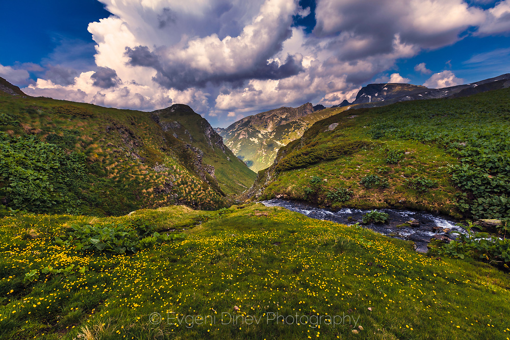 stream passes the valley in Rila Mountain