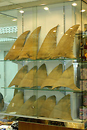 shark finning is one of the world's most destructive fisheries. processed shark fins for sale as a soup ingredient in a traditional Chinese market, Hong Kong, China, Pacific Ocean&amp;#xD;&copy; KIKE CALVO - V&amp;W &amp;#xD;( dry food, Asian delicacy, ocean explotaition, endangered, species, medicine, health, beliefs, culture , gift)<br />