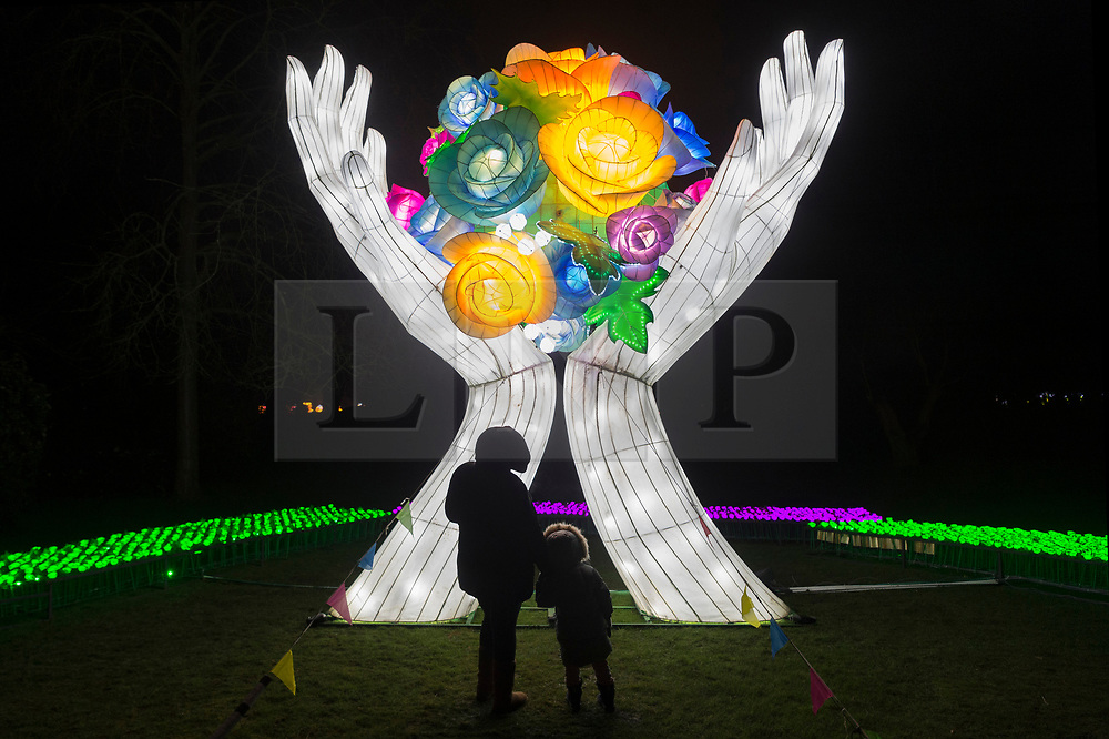 © Licensed to London News Pictures. 21/01/2020. London, UK. Visitors view a light installation showing as part of the Lightopia Festival in Chiswick House Gardens. Photo credit: Ray Tang/LNP
