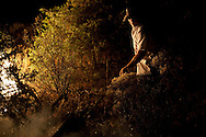 A neighbor works on a forest fire near El Cubillo de Uceda, on August 11, 2012 in Guadalajara, Spain. During a heat wave dozens of forest fires have appeared in Spain, three of them at National Parks, like Teide, Doñana or Cabañeros, and thousands of people had to be evacuated at La Gomera and Tenerife, in the Canary Islands.