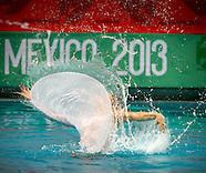 2013 - VIII FINA Synchro Trophy