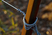 Rusty pole and taut wire used for support