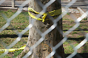 fenced off area with yellow caution tape and fence