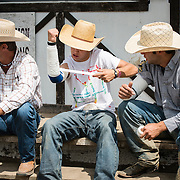 Young riders carefully tape their arms to prevent elbow dislocation or bad muscle stretching from riding wild horse.
