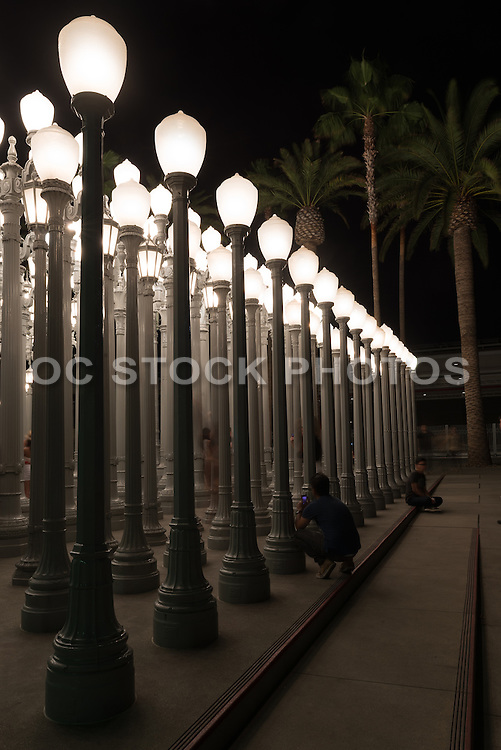 Urban Light at LACMA of Los Angeles