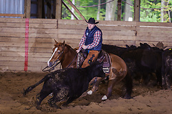 May 21, 2017 - Minshall Farm Cutting 4, held at Minshall Farms, Hillsburgh Ontario. The event was put on by the Ontario Cutting Horse Association. Riding in the 25,000 Novice Horse Non-Pro Class is Eric Bouchard on The Reyl Slim Shady owned by the rider.
