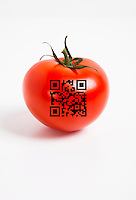 Close-up of tomato with bar code over white background