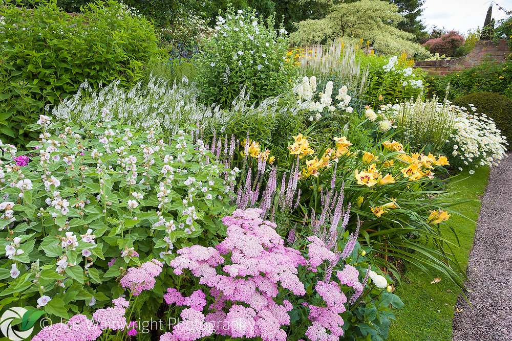A richly planted summer border at Wollerton Old Hall GFardens, Shropshire.
