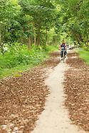 Bycicle path oustide Nyaungshwe