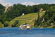 Elbe und Schloss Eckberg, Weinberg, Dampfer, Dresden, Sachsen, Deutschland.|.river Elbe, castle Eckberg, steamer, Dresden, Germany