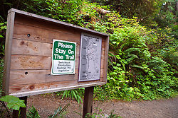 US Forest Service bulletin board with trail maps and warning to stay on trail, Lake Quinault Rain Forest, near Olympic National Park, Washington, United States of America