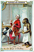 Georges-Louis Leclerc, Comte de Buffon (1707-88) French naturalist, being waited on by his trained chimpanzee. French trade card issued c1890. Chromolithograph.