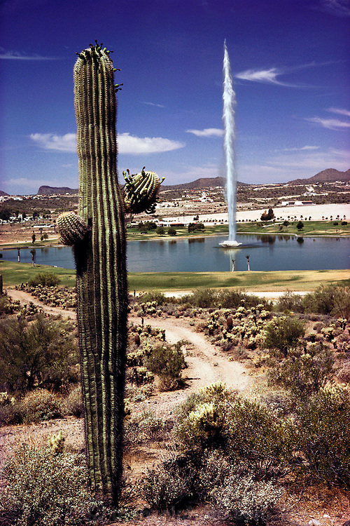Fountain Hills, Arizona. A huge fountain in the middle of an artificial lake is a feature of this desert subdivision, showing a blatant disregard for water preservation. When the temperature is very hot, the entire fountain evaporates before it rains into the lake. USA.