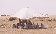 Desert school  of the Al Amarah clan, Saudi Arabia