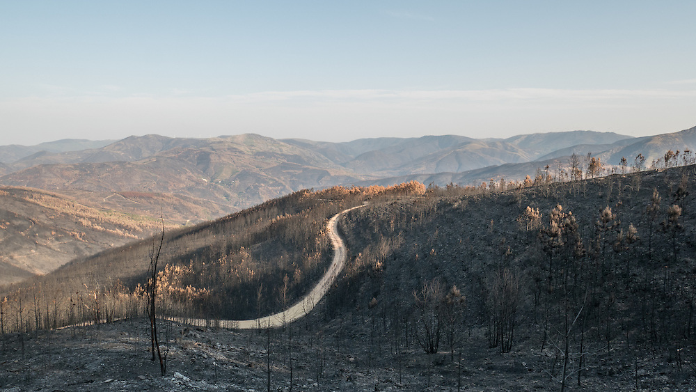 Parque Augusto Pinto de Magalhaes, The month of August, when temperatures are high, winds blow strongly and woodland is parched, is traditionally the peak time for wildfires in Portugal and other southern European countries.