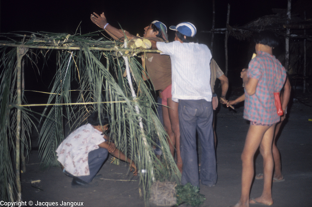Brazil, Amazon region, Para State. Assurini Indians (tupi-speaking): shamanic ceremony at night. Shaman reaching for some immaterial substance or being above palm leaves shrine. This is part of a complex set of rituals.