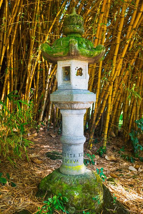 Japanese lantern and bamboo at Lili'uokalani Park and garden, Hilo, The Big Island, Hawaii USA