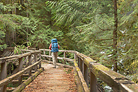 Backpacker on wooden bridge spanning Hidden Creek. Baker Lake Trail, North Cascades Washington