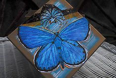 Beach Sisters Shop.com Home Decor, Stash Boxes, Gift Boxes, and Decorative Home and Storage
