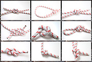Nine nautical knots on white background