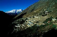 Nepal - Region du Khumbu - region de l'Everest - Village de Pangboche à 4000m d'altitude