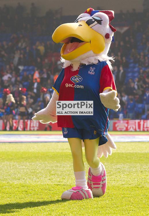 Eagles mascot Alice the eagle Crystal Palace v Southampton Premiership  Premiership 8/3/2014 (c) Steve Ball|/Sportpix.org.uk(c) Steve Ball| SportPix.org.uk