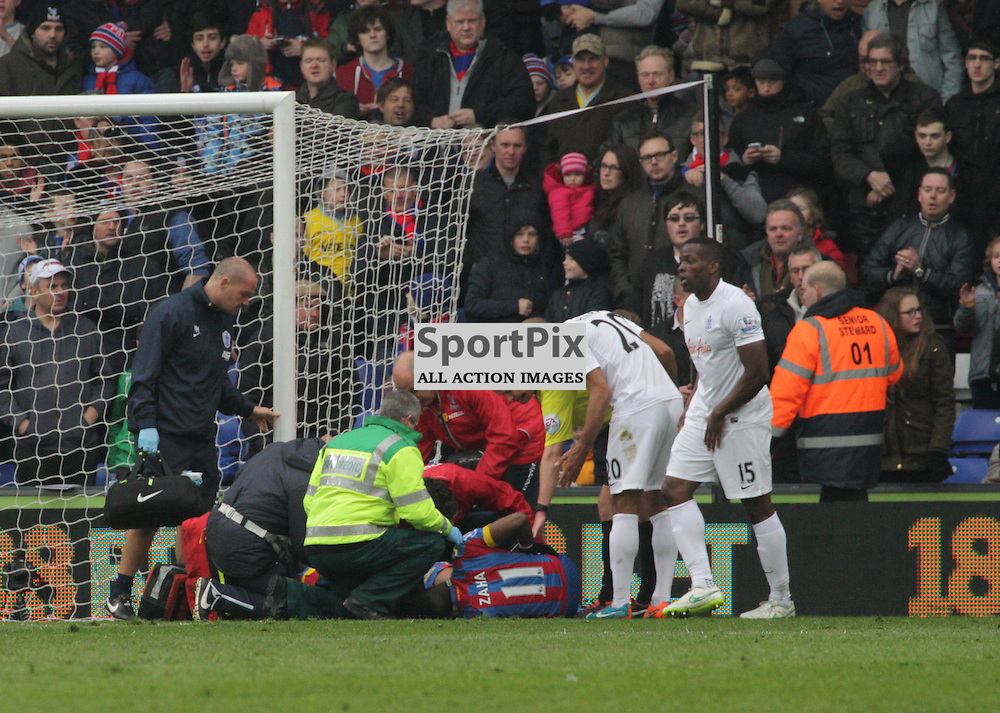 Wilfried Zaha recieves treatment after scoring During the game between Crystal Palace and Queens Park Rangers on Saturday 14th March 2015