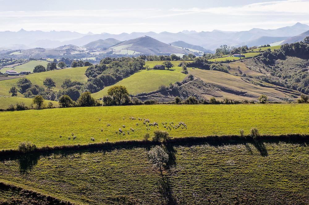 Landscape of the internal of the Basque Country with the chain of background Pyrenees.  Paysage de l'intérieure du pays Basque avec la chaine des Pyrénées en arrière plan.