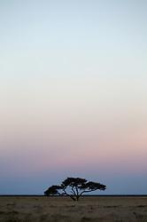 NAMIBIA ETOSHA 28APR14 - Sunset over the salt pan of Etosha National Park, Namibia.<br /> <br /> <br /> <br /> jre/Photo by Jiri Rezac<br /> <br /> <br /> <br /> © Jiri Rezac 2014