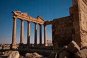 Palmyra - Palmyre