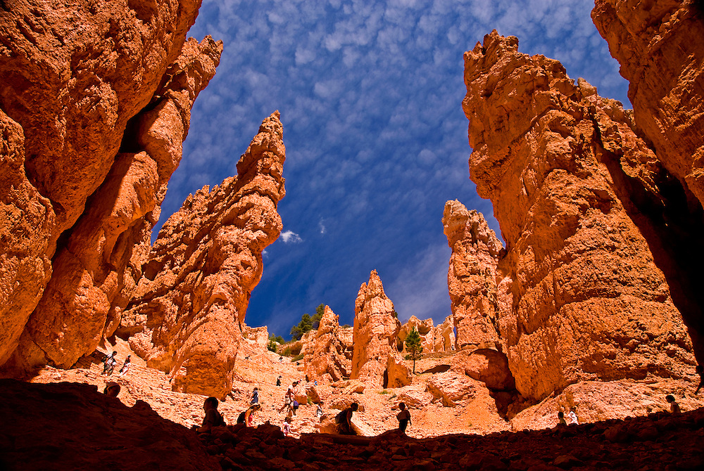 Bryce Canyon National Park, UT, USA.