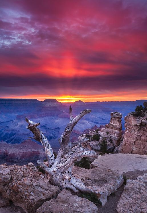 Spectacular sunrise from Yaki Point, Grand Canyon National Park, Arizona, USA