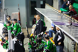 14.11.2014, Hala Tivoli, Ljubljana, SLO, EBEL, HDD Telemach Olimpija Ljubljana vs Dornbirner Eishockey Club, 18. Runde, in picture Fabian Dahlem, head coach of HDD Telemach Olimpija, during the Erste Bank Icehockey League 18. Round between HDD Telemach Olimpija Ljubljana and Dornbirner Eishockey Club at the Hala Tivoli, Ljubljana, Slovenia on 2014/11/14. Photo by Matic Klansek Velej / Sportida