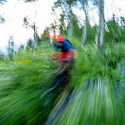 Andrew Whiteford rides through the spring green of the Philip's Ridge trail off of Teton Pass.