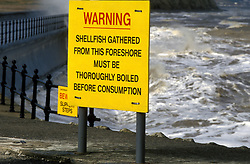 Shellfish warning sign - must be thoroughly washed before consumption because of pollution in sea, UK