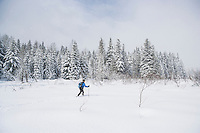A woman cross country skiing across an open meadow. Cabin Creek Snow Park, Washington Cascades, USA.