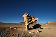 Images around Arbol de Piedra (Tree Rock) in the southern end of the Bolivian Altiplano - it is the result of a volcanic eruption from a volcano across the valley - spewed rocks around the surrounding desert