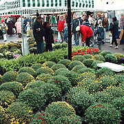 Huizerdag Huizen 1998, braderie centrum