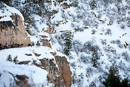 Quiet Cold Morning of winter on the Bright Angel Trail of Grand Canyon.