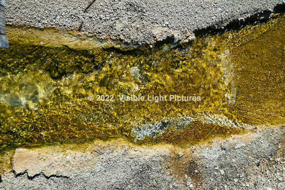Yellowstone National Park, geothermal stream