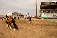 Will James Roundup, Ranch Rodeo, Three Man Cow Doctoring, Hardin, Montana, Reata Brannaman, Sara Sandusky, Cody Hill
