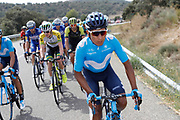 Nairo Quintana (COL - Movistar) during the 73th Edition of the 2018 Tour of Spain, Vuelta Espana 2018, 19th stage Lleida - Andorra 154,4 km on September 14, 2018 in Spain - Photo Luca Bettini / BettiniPhoto / ProSportsImages / DPPI